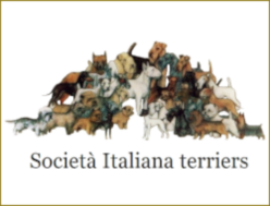 Societa Italiana Terrier